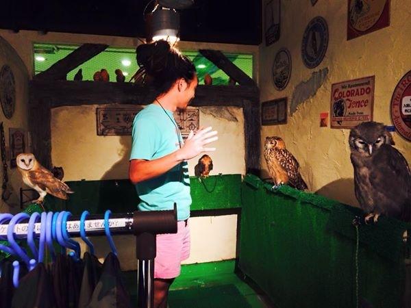 鳥のいるカフェ 2