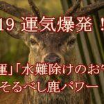 鹿は福を呼ぶ縁起物